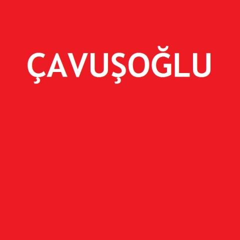 Çavuşoğlu 2. eL